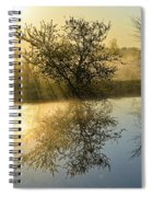 River Rays Spiral Notebook