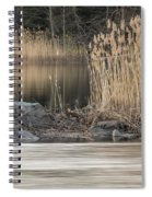 River Rock And Reeds Spiral Notebook