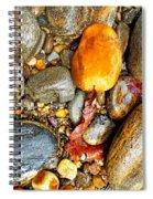 River Rocks 8 Spiral Notebook