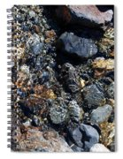 River Stones Spiral Notebook