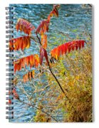 River Sumac Spiral Notebook
