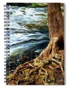 River Through Woods Spiral Notebook