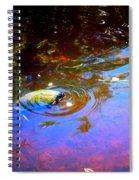River Turtle Spiral Notebook