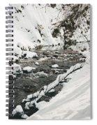 River Vertical Spiral Notebook