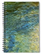 River Water 1 Spiral Notebook