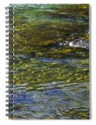 River Water 2 Spiral Notebook