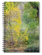 Riverbank Colors Spiral Notebook