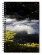 River's Ebb Spiral Notebook
