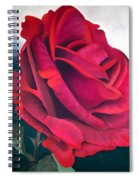 Riverview Spiral Notebook