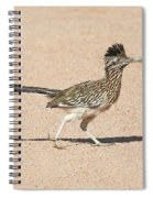 Road Runner On The Road Spiral Notebook