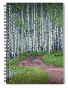 Road Through A Birch Tree Grove Spiral Notebook