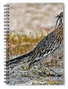 Roadrunner With Lizard Spiral Notebook