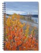 Roadside Reds Spiral Notebook