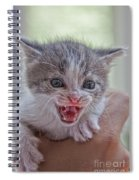 Roar Spiral Notebook