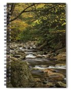 Roaring Branch Brook Spiral Notebook