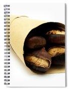 Roasted Chestnut Spiral Notebook