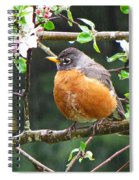 Robin In Apple Tree Spiral Notebook