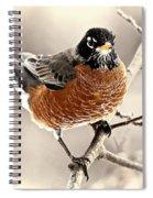Robin Spiral Notebook