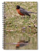Robin Reflection Spiral Notebook