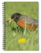 Robin Vs Worm Spiral Notebook