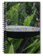 Robins In Bird Bath Spiral Notebook