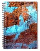 Rock Art 15 Spiral Notebook