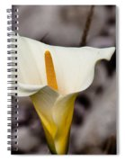 Rock Calla Lily Spiral Notebook