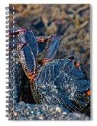 Rock Crab At He'eia Kea Pier Spiral Notebook