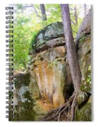 Rock Formation Wildcat Den State Park Spiral Notebook