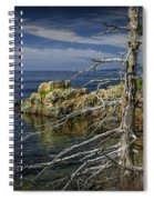 Rock Formations And Trees On The Shoreline In Acadia National Park Spiral Notebook
