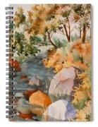 Rock Reflections Spiral Notebook