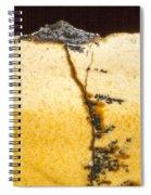 Rock Star Repeat Spiral Notebook