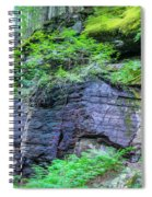 Rock Wall Trail Of The Cedars Glacier National Park Painted Spiral Notebook