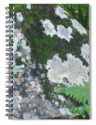 Rock With Moss Spiral Notebook