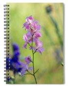 Rocket Larkspur Spiral Notebook