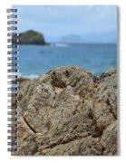 Rockin' The Caribbean Spiral Notebook