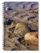 Rocks In A Row Spiral Notebook