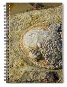 Rocky Cliff Spiral Notebook