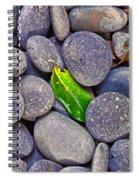 Rocky Landing Spiral Notebook