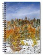Rocky Mountain Autumn Storm Spiral Notebook