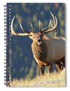 Rocky Mountain Bull Elk Bugling Spiral Notebook