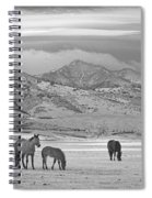 Rocky Mountain Country Morning Bw Spiral Notebook