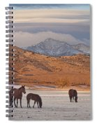 Rocky Mountain Country Morning Spiral Notebook