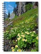 Rocky Mountain Summer Landscape Spiral Notebook