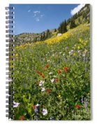 Rocky Mountain Wildflower Landscape Spiral Notebook