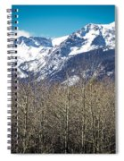 Rocky Mountain Woodland Spiral Notebook