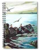 Rocky Seashore And Seagulls Spiral Notebook