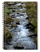 Rocky Stream Spiral Notebook