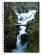 Rogue River Falls 1 Spiral Notebook