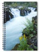 Rogue River Falls 5 Spiral Notebook